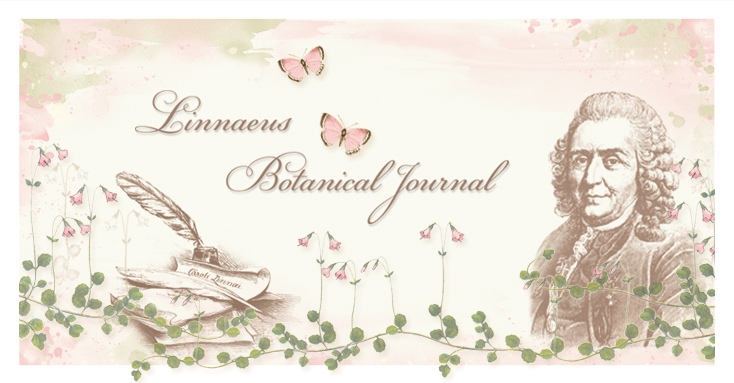 linnaeus-botanical-journal-preview-blog.jpg
